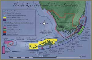 Fishing Reefs and Shipwrecks  Florida Go Fishing