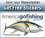 join our newsletter and get free stickers